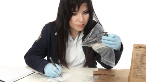 Advanced Criminology Course