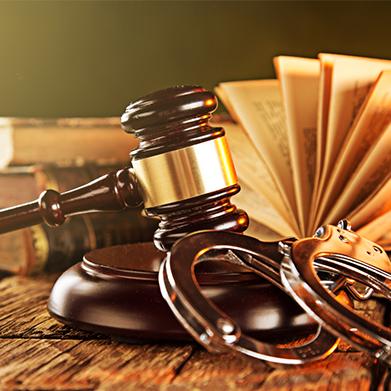 Criminal Law Course